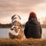 孤独と緩和ケア がん体験は共有し難いがゆえに